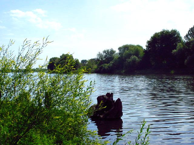 рыбалка в районе верейка